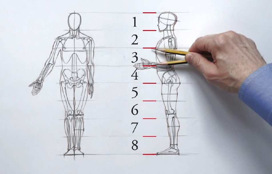 The Anatomy of an Entrepreneur Drawing Sketch