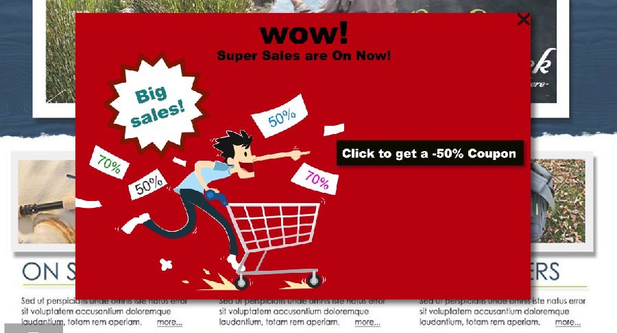 Ecommerce Sales Discount Offers Popup