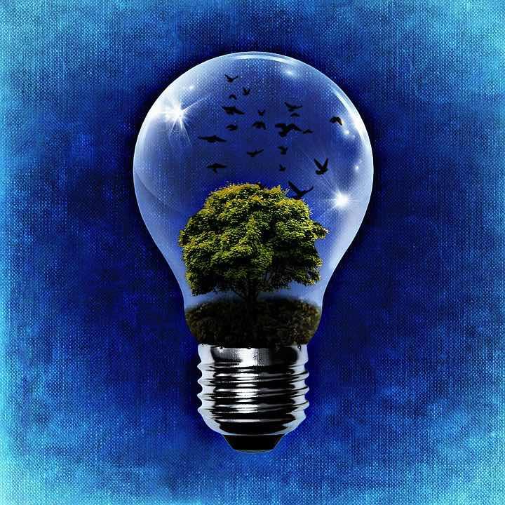 Generating Ideas LightBulb World