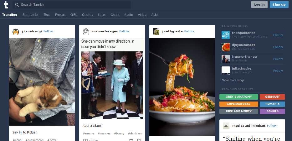 Tumblr Platform Pictures Examples
